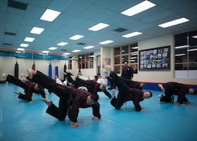 NEW What is Hapkido